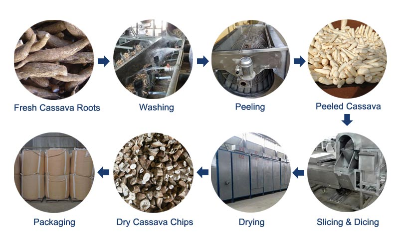 cassava chips production process