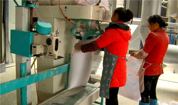 The picture shows the last process of the equipment production line: starch finished bagging and packaging