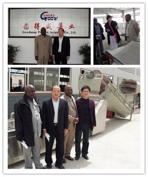 20t/d Manioc Powder Production Line settled in Africa